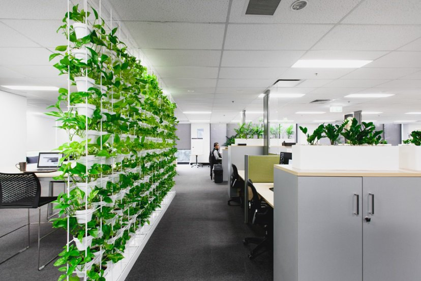 Thiết kế văn phòng xanh giúp không gian tiết kiệm hơn